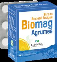 Lehning Biomag Comprimés à Croquer Agrumes B/90 à ANGLET