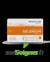 Granions De Selenium 0,96 Mg/2 Ml S Buv 30amp/2ml à ANGLET