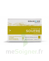 Granions De Soufre 19,5 Mg/2 Ml S Buv 30amp/2ml à ANGLET
