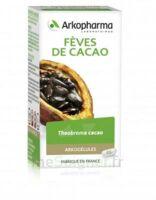 Arkogélules Cacao Gélules Fl/45 à ANGLET