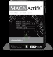 Synactifs Magnactifs Gélules B/60 à ANGLET