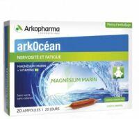 Arkocean Magnesium Marin Solution Buvable Caramel 20 Ampoules/10ml à ANGLET
