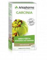 Arkogélules Garcinia Gélules Fl/45 à ANGLET