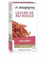 Arkogélules Levure de riz rouge Gélules Fl/45 à ANGLET