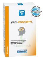 Ergyfosforyl Caps B/60 à ANGLET