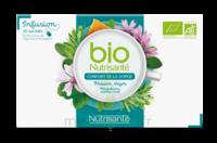 Nutrisanté Infusions Bio Tisane Confort de la gorge 20 Sachets à ANGLET