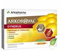 Arkoroyal Dynergie Ginseng Gelée royale Propolis Solution buvable 20 Ampoules/10ml à ANGLET