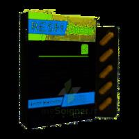 Synactifs Respigreen Bio Gélules B/10 à ANGLET