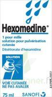 Hexomedine 1 Pour Mille, Solution Pour Pulvérisation Cutanée En Flacon Pressurisé à ANGLET