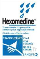 Hexomedine Transcutanee 1,5 Pour Mille, Solution Pour Application Locale à ANGLET