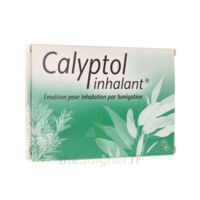 Calyptol Inhalant, émulsion Pour Inhalation Par Fumigation à ANGLET