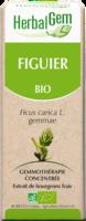 Herbalgem Figuier Macerat Mere Concentre Bio 30 Ml à ANGLET