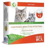 Vétobiolcomprimés Hygiène Intestinale Chat/chaton B/3 à ANGLET