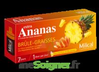 MILICAL ANANAS BRULEUR DE GRAISSE à ANGLET