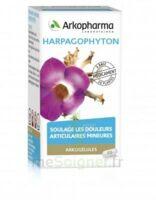 Arkogelules Harpagophyton Gélules Fl/45 à ANGLET