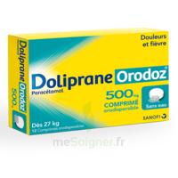Dolipraneorodoz 500 Mg, Comprimé Orodispersible à ANGLET