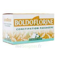 Boldoflorine, Mélange De Plantes Pour Tisane En Sachet-dose B/24 à ANGLET