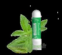 Puressentiel Respiratoire Inhaleur Respiratoire aux 19 Huiles Essentielles - 1 ml à ANGLET