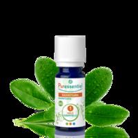 Puressentiel Huiles essentielles - HEBBD Ravintsara BIO* - 5 ml à ANGLET