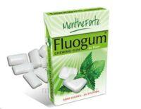 FLUOGUM Chew gum dragée menthe forte à ANGLET