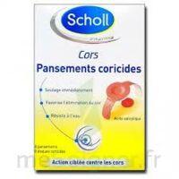 Scholl Pansements coricides cors à ANGLET