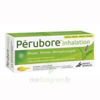 Perubore Caps Inhalation Par Vapeur Inhalation Plq/15 à ANGLET
