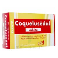 Coquelusedal Adultes, Suppositoire à ANGLET