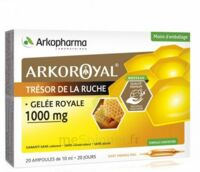 Arkoroyal Gelée Royale 1000 Mg Solution Buvable 20 Ampoules/10ml à ANGLET