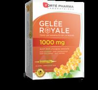 Forte Pharma Gelée Royale 1000 Mg Solution Buvable 20 Ampoules/10ml à ANGLET