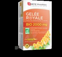 Forte Pharma Gelée royale bio 2000 mg Solution buvable 20 Ampoules/15ml à ANGLET