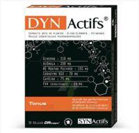 Synactifs Dynactifs Gélules B/30 à ANGLET