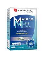 Magné 300 Marin (2 mois) à ANGLET