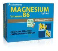 Arkovital Magnésium Vitamine B6 Gélules B/120 à ANGLET