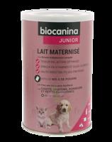 Biocanina Lait poudre maternisé B/400g à ANGLET