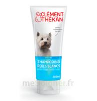 Clément Thékan Shampooing Poils Blancs T/200ml à ANGLET