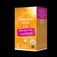 Terracotta Cocktail Solaire Comprimés 3*B/30 à ANGLET