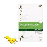 Aromaforce Caps inhalation bio B/15 à ANGLET