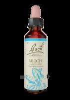 Fleurs De Bach® Original Beech - 20 Ml à ANGLET