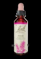 Fleurs De Bach® Original Pine - 20 Ml à ANGLET
