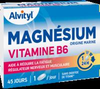Govital Magnésium Vitamine B6 Comprimés B/45 à ANGLET
