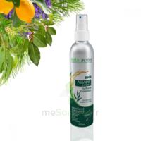 Naturactive Assaini'spray 200ml à ANGLET