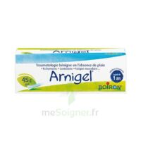 Boiron Arnigel Gel T(alumino-plastique)/45g à ANGLET