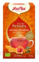 Yogi Tea Tis Bien-Être Naturel Bio 20sach/2g à ANGLET