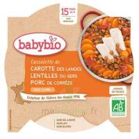 Babybio Assiette Carotte Porc Lentilles à ANGLET