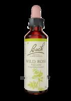 Fleurs De Bach® Original Wild Rose - 20 Ml à ANGLET