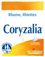 Boiron Coryzalia Comprimés Orodispersibles à ANGLET