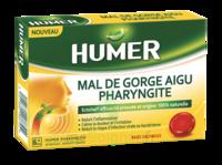 Humer Pharyngite Past Mal De Gorge Baies Sauvages à ANGLET